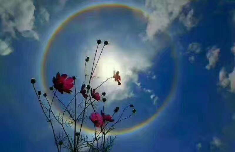 <b>贵阳天空景观奇特,太阳不同寻常的美丽</b>