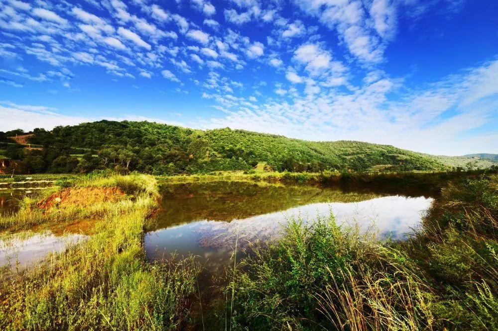 图片22 南泥湾国家湿地公园.png?x-oss-process=style/w10